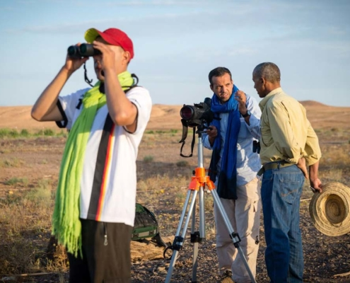 Observations-ornithologique-et-gazelles-à-Ouarzazate